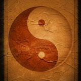 tao_new